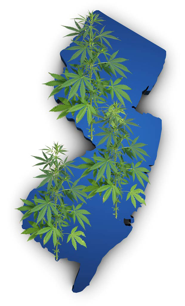 new jersey marijuana merchant account