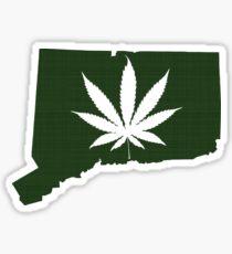 connecticut marijuana dispensary merchant account