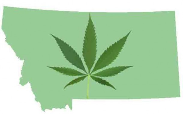 montana marijuana dispensary merchant account