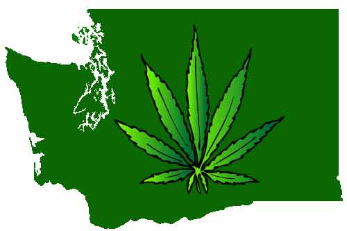 washington state marijuana dispensary credit card processing
