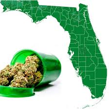 florida marijuana dispensary credit card processing