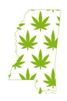 mississippi marijuana merchant account services