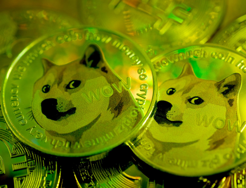 "Dogecoin credit card processing, ""doge"" merchant account services"